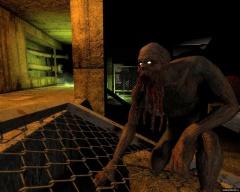 Тень Чернобыля