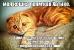 post-5278-0-95028900-1409929954_thumb.jpg